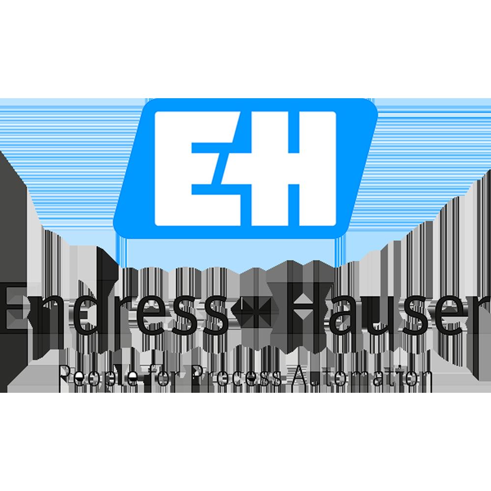 Endress_Hauser